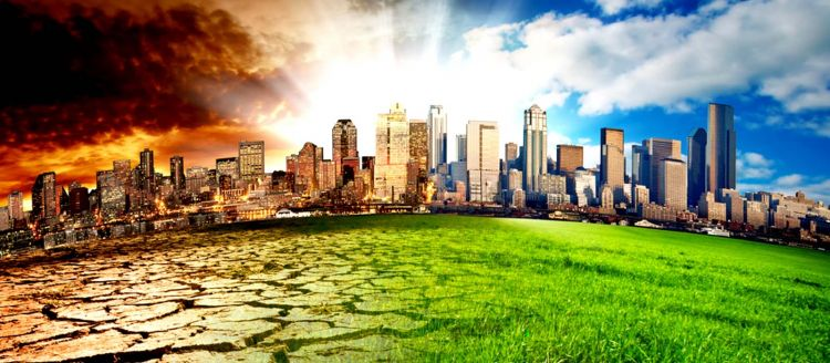 Is Sweden's 'green miracle' a model for the rest of the world?