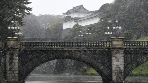 Tokyo sees first November snow in 54 years - PHOTOS