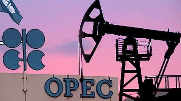 OPEC oil price drops below $50/bbl