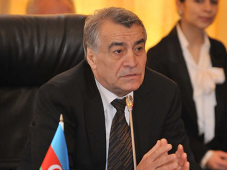 Natig Aliyev: SOCAR can participate in projects in Saudi Arabia
