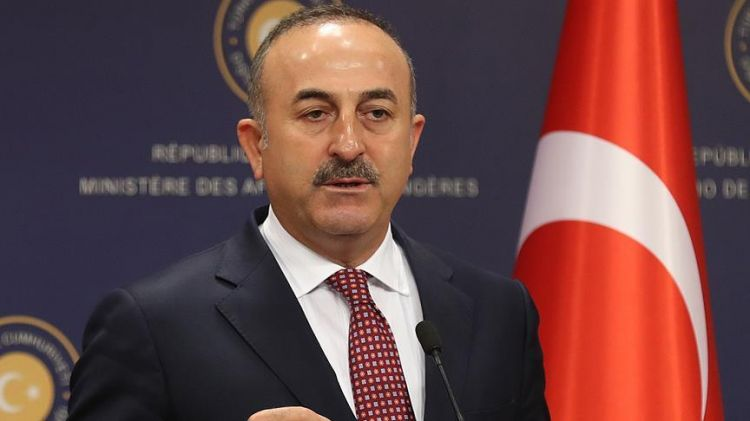 Cavusoglu: PACE to regret decision on Turkey